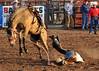 20120629_Rodeo_049a
