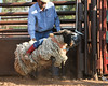 20120628_Rodeo_0007