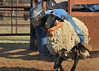 20120628_Rodeo_0059