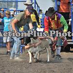 2011 HRA Finals Sun 233