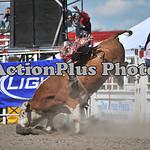 MS Sun Rodeo 327