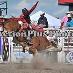 MS Sun Rodeo 325
