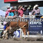 MS Sun Rodeo 324