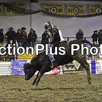 PJr Bulls Perf1 004