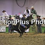 PJr Bulls Perf1 002
