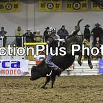 PJr Bulls Perf1 005