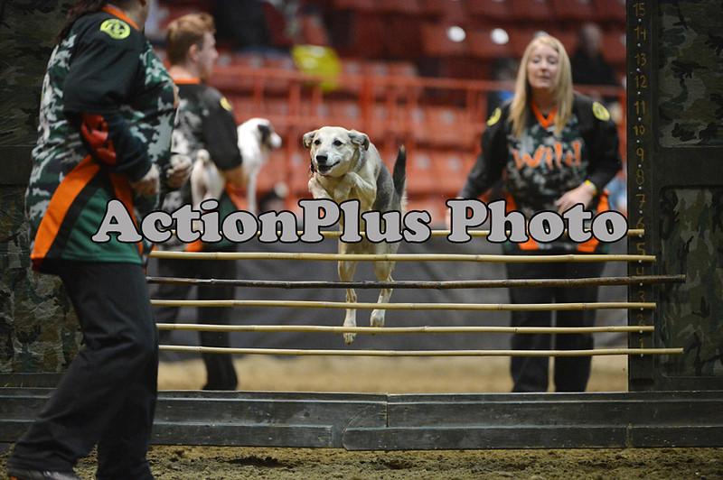 12MRCA Finals Wild Dogs 07