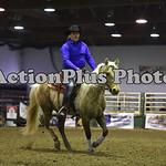 Ranch Horse 006