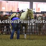 Ranch Horse 004