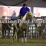 Ranch Horse 005
