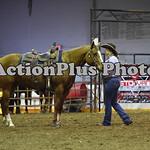 Ranch Horse 168