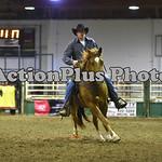 Ranch Horse 156