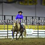 Ranch Horse 007