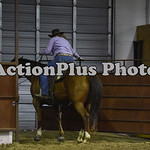 Ranch Horse 180