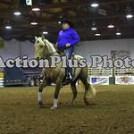 Ranch Horse 008