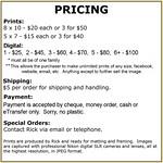 Pricing - General