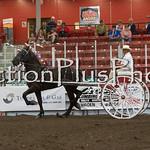 18Virden Draft Horse (63 of 100)