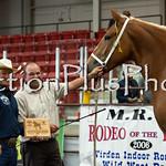 18Virden Draft Horse (61 of 100)