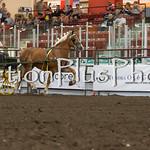 18Virden Draft Horse (84 of 100)