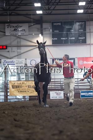 18Virden Draft Horse (21 of 100)