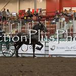 18Virden Draft Horse (76 of 100)
