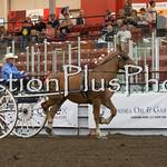 18Virden Draft Horse (79 of 100)