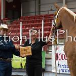 18Virden Draft Horse (44 of 100)