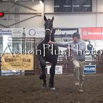 18Virden Draft Horse (28 of 100)