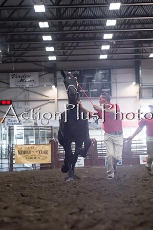 18Virden Draft Horse (23 of 100)