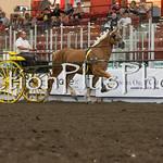 18Virden Draft Horse (85 of 100)