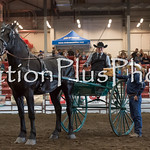 18Virden Draft Horse (96 of 100)