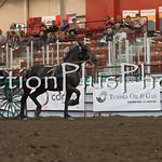 18Virden Draft Horse (87 of 100)