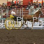 18Virden Draft Horse (86 of 100)