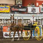 18Virden Draft Horse (99 of 100)