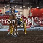 18Virden Draft Horse (11 of 100)