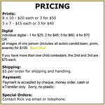 Pricing Info HS rodeo II