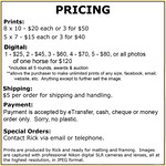 Pricing MB Rope Horse Futurity