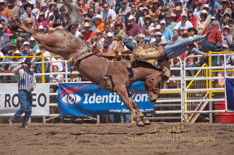 Out of here! This bronc has the final word. - Sisters Rodeo 2010 - Gary Miller - Sisters Country Photography