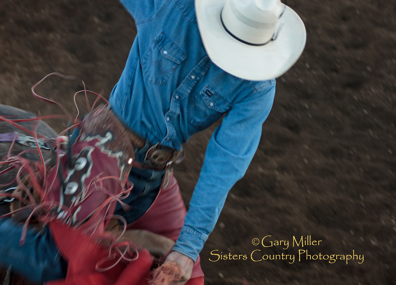 Fluid Motion. A saddle bronc rider  Friday evening, Sisters Rodeo 2010 Gary Miiller - Sisters Country Photography