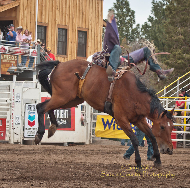 Bareback rider Bryan Bain - 2011 Sisters Rodeo, Sisters Oregon - Photographer Gary Miller - Sisters Country Photography