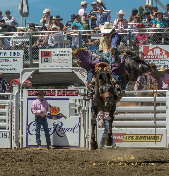 A fantastic saddle-bronc ride on Sunday, a picture perfect day at the 2012 Sisters Rodeo -Sisters, Oregon - Gary N. Miller - Sisters Country Photography