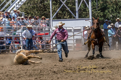 Tie-down roping at Saturday afternoon's performance of the 2013 Sisters Rodeo - Sisters, Oregon - Copyright © 2013 Gary N. Miller, Sisters Country Photography
