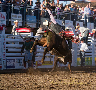 Dylan Hice Vick from Excalon, California rides has a great ride at the Wednesday Bull Extravaganza night at the 2013 Sisters Rodeo - Sisters, Oregon - Copyright © 2013 Gary N. Miller, Sisters Country Photography