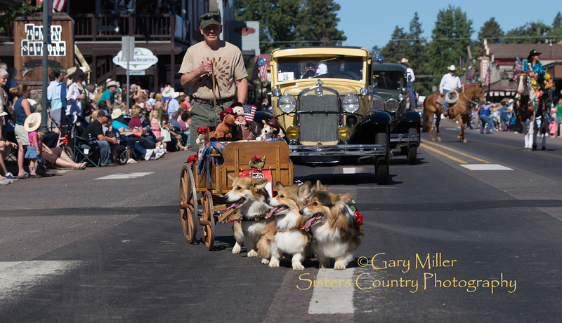 2013 Sisters Rodeo Parade - Sisters, Oregon - Copyright © 2013 Gary N. Miller, Sisters Country Photography