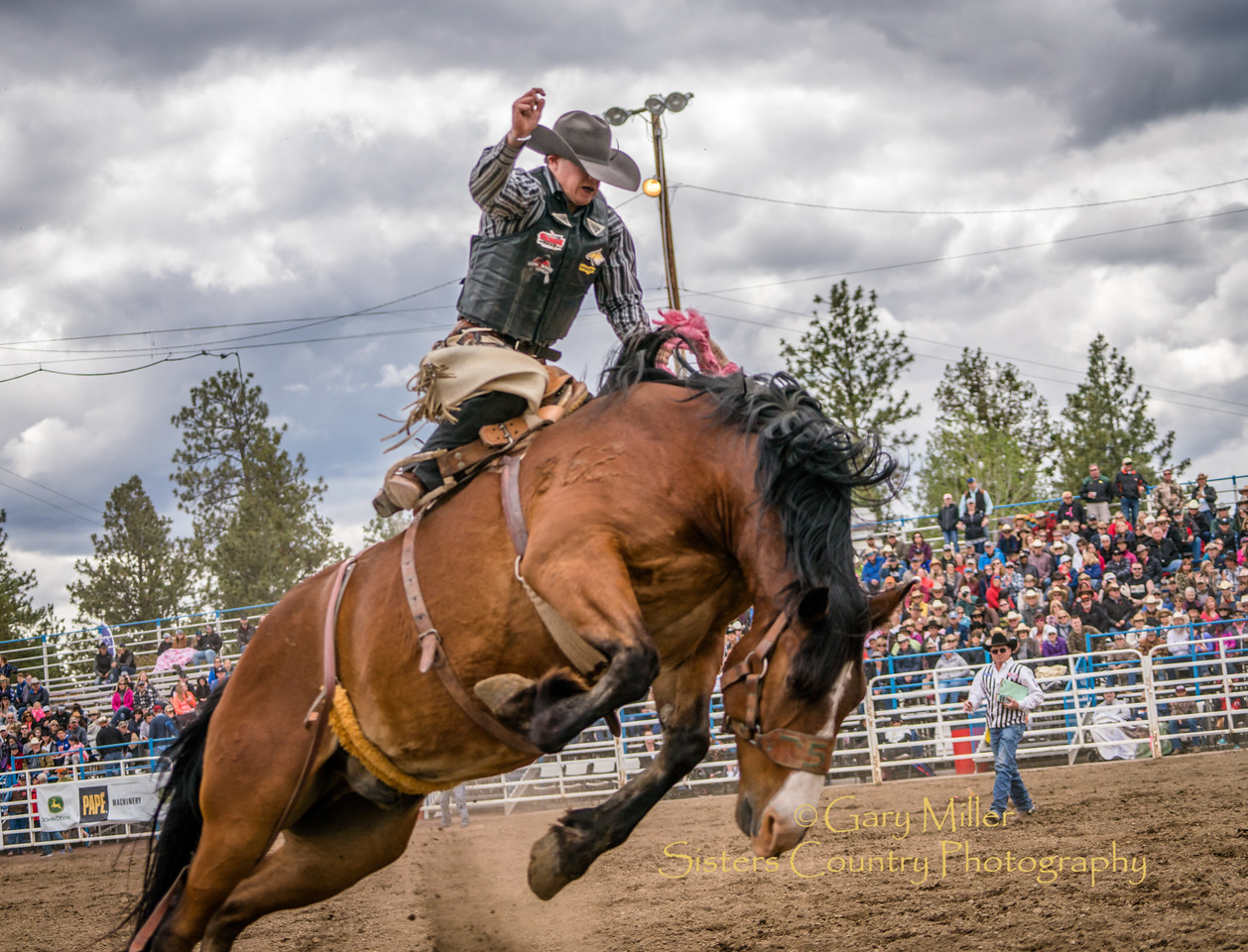 Sunday afternoow at the 2017 Sisters Rodeo © 2017  Gary N. Miller, Sisters Country Photography