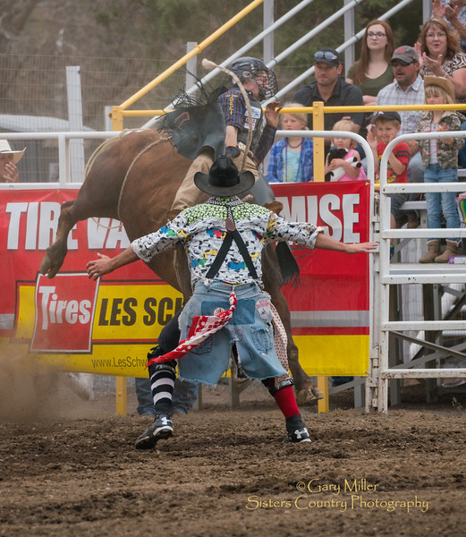Extreme Bulls on Wednesday night of the 2017 Sisters Rodeo © 2017  Gary N. Miller, Sisters Country Photography