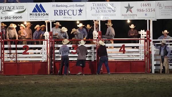 Saddle Bronc6 BLUERIDGE WG