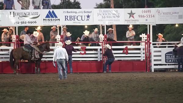 Saddle Bronc4 BLUERIDGE WG