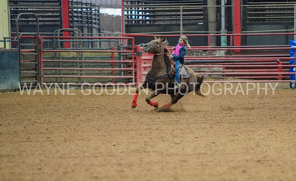 Wayne Gooden Rodeo Photographer