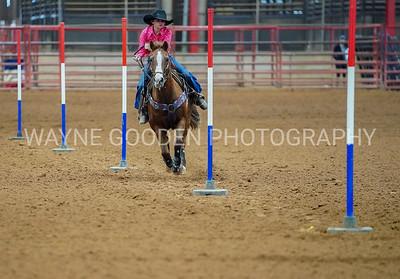 Wayne Gooden Rodeo Photographer